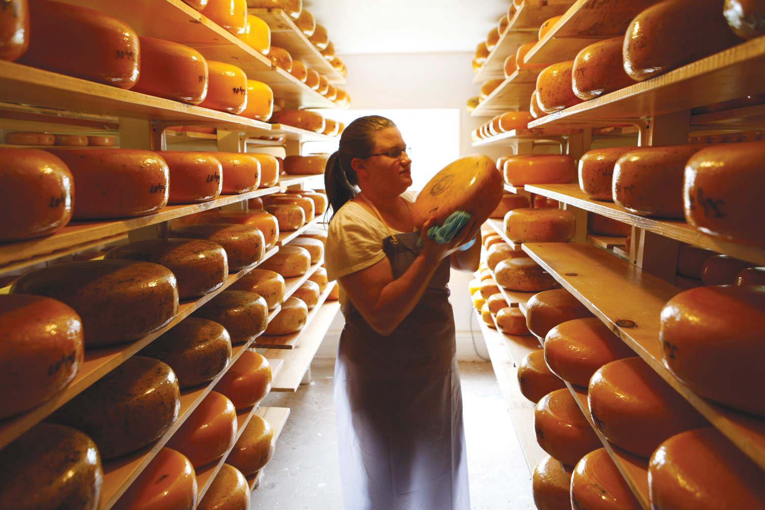 Photo - Margaretha van den Hoek Field inspects some cheese