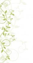 décor vectoriel vert sur fond blanc – nature