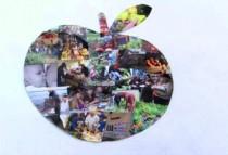 WebPic_CollageApple