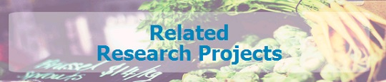 Graphic banner - Related Research Projects