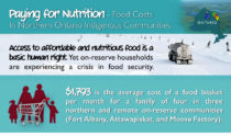 PayingforNutrition-Infographic-Sm