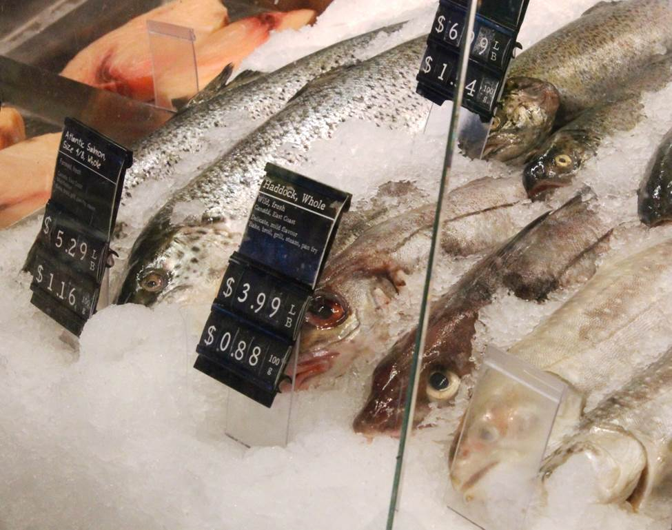 Photo - Frozen Fish and pricing