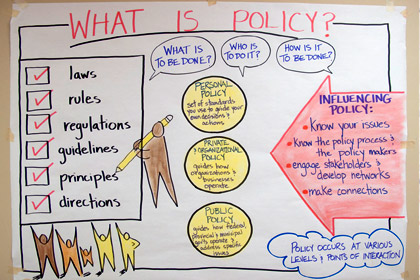 Infographic - What is Policy chart.
