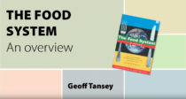 thefoodsystem-gTansey