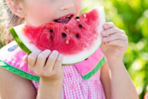 Photo - Young girl eating watermelon.