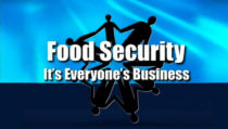 Graphic - Food Security: It's Everyone's Business