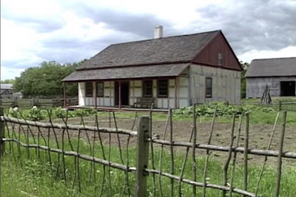 Photo - Local Farm